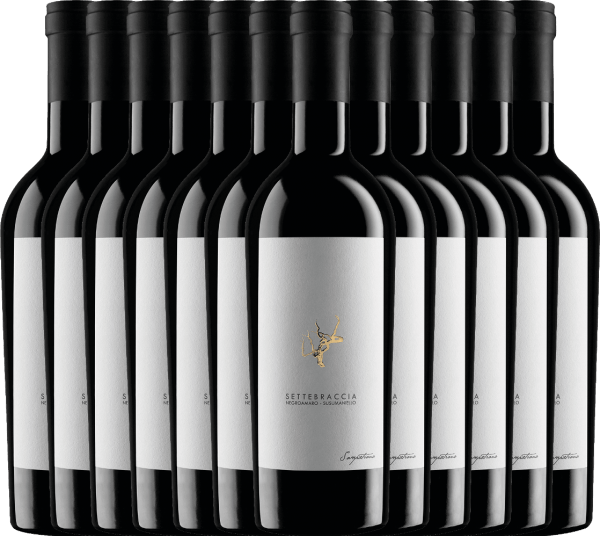 12er Vorteils-Weinpaket - Settebraccia Rosso 2017 - Cantina Sampietrana